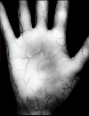 Fujitsu may bring ID-checking palm scanners to smartphones