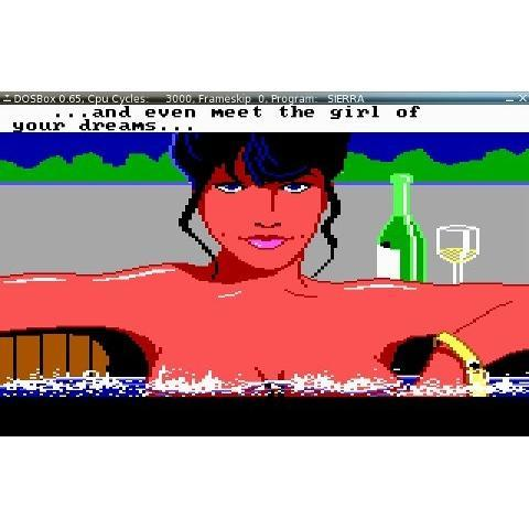 In Pictures: Sex in Video Games