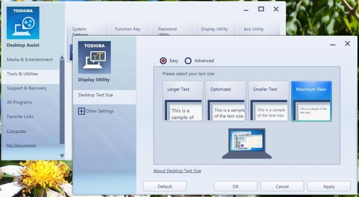 The Desktop Assist program's Display Utility, from which you can change the size of the Desktop icons and Taskbar.