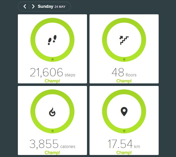 Fitbit Surge data for a complete day.