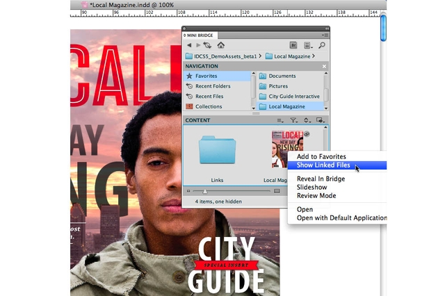 Adobe Systems InDesign CS5