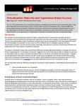 Building Maturity and Experience in Successful Virtualisation Strategies